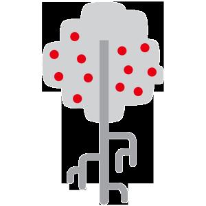 albero_radici